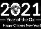 Impact of Chinese New Year 2021